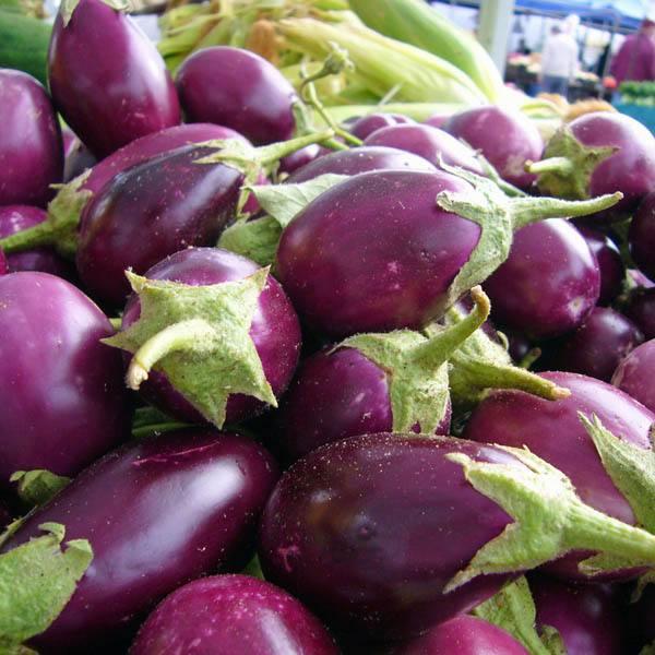 australian seed eggplant mini violet ruby. Black Bedroom Furniture Sets. Home Design Ideas