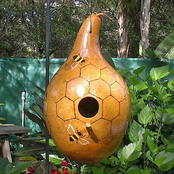 gourd birdhouse gourds australian seed